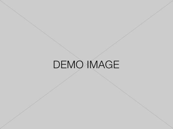 demo-image 4